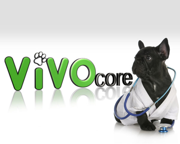 This logo was part of a brand creation for Vivocore inc. Vivocore is an animal husbandry facility focused on the sciences.  They needed a brand that spoke to their love of both animals and the sciences.  Colours and fonts were chosen based on emotional familiarity with life and nurturing coupled with technology and business.